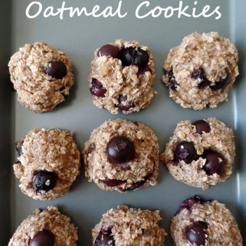 Cinnamon Blueberry Banana Oat Cookies