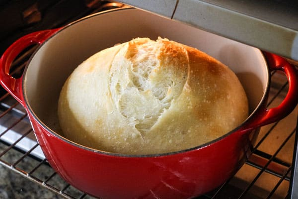 Small dutch oven bread baking inside a countertop oven.