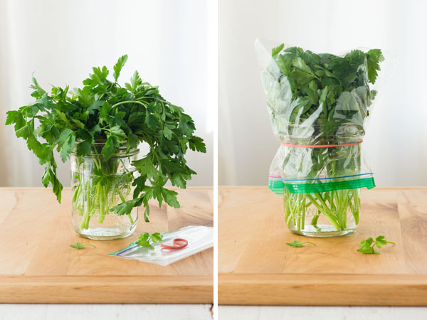First Photo: Parsley in a mason jar with water. Second Photo: Parsley in mason jar covered with a plastic bag.