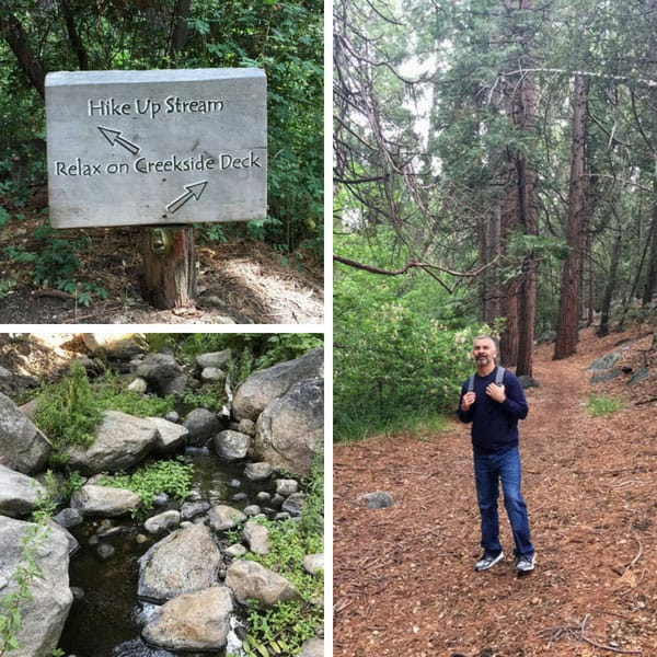 Photos of a sign leading a creek, Strawberry Creek and a man standing in the forrest.