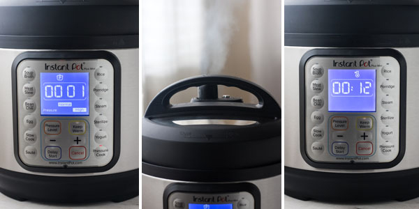 Close up photos of the Instant Pot Mini Screen and top with steam releasing.