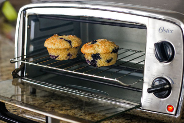 Two blueberry muffins on a rack in a toaster oven.