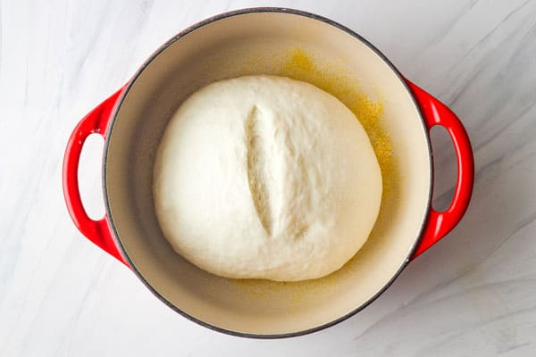 Risen dough slashed down the middle.