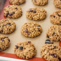 Cranberry Orange Toaster Oven Oatmeal Cookies Recipe