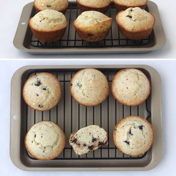 Muffins baked in a Breville Smart Oven with Convection