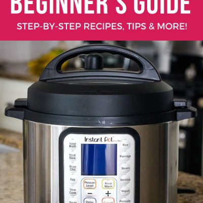 Instant Pot Mini Beginners Guide